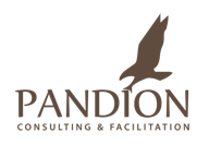 Pandion Consulting & Facilitation Logo